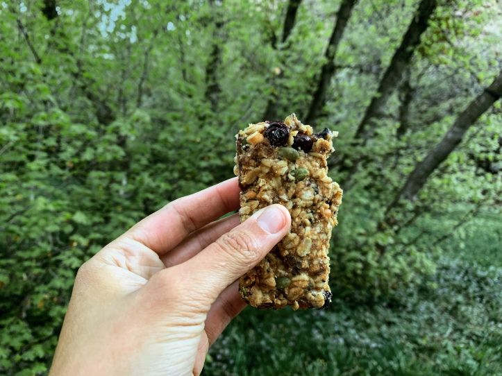 homemade vegan blueberry lemon granola bars
