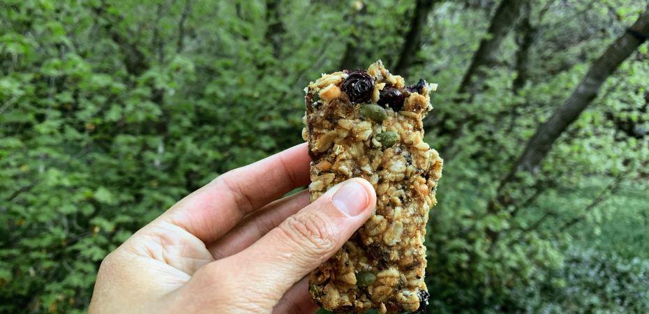 blueberry lemon granola bars in the wild