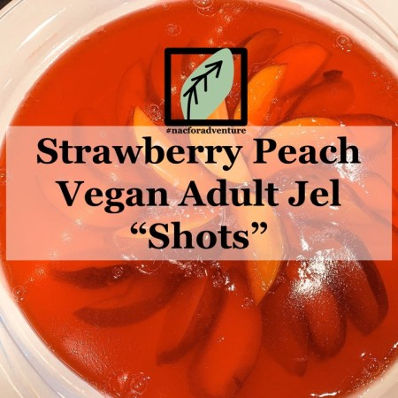 adult vegan jello shots