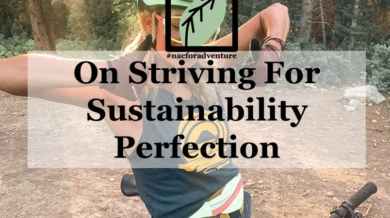on striving for sustainability perfection