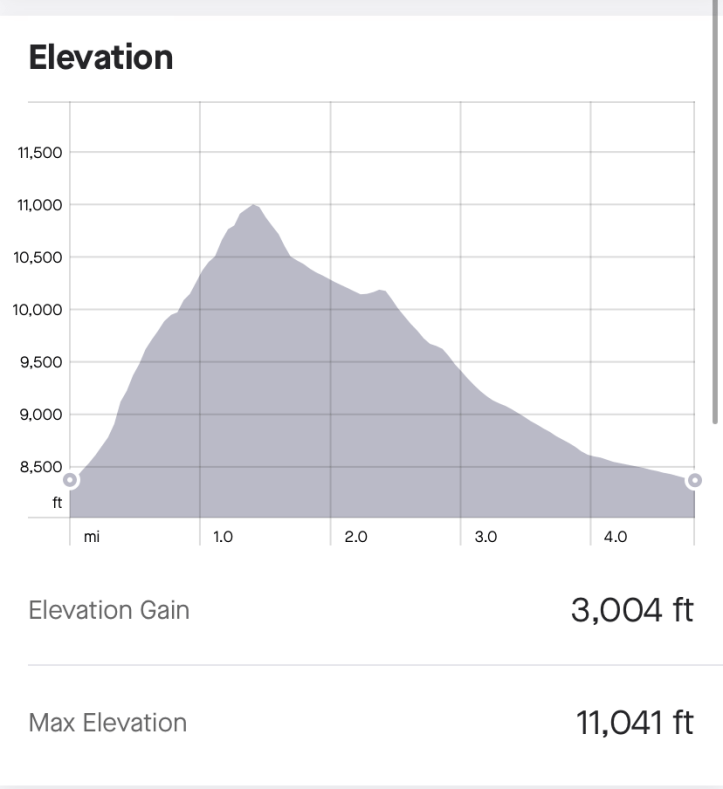 elevation gain on MOunt Superior technical scramble hike