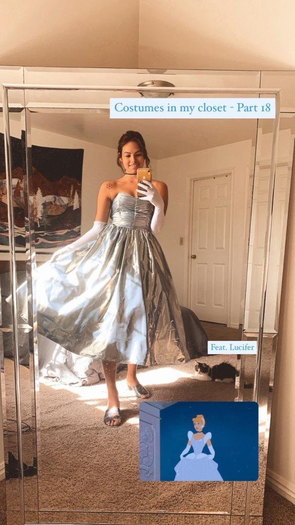 Cinderella Costume - Cinderella